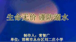 【三等奖】常智广丛台区刘二庄小学-生命无价,谨防溺水