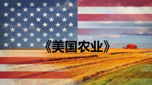 《美国农业》