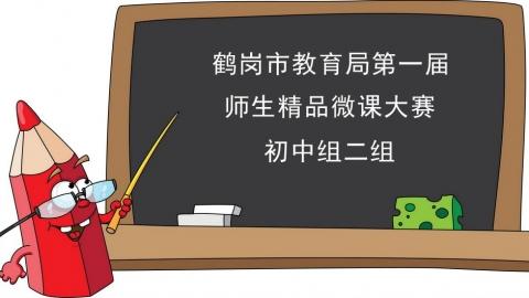 鹤岗市第一届微课大赛初中组二组