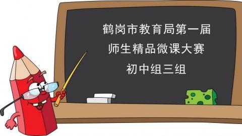 鹤岗市第一届微课大赛初中组三组